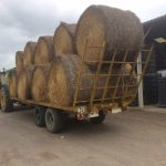 Bales of hay arriving in Rully