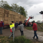 Bales of hay arriving in Volnay. Will be burned overnight