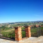 Three Days in the Langhe 15