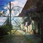 Three Days in the Langhe 8
