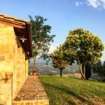 Skurnik Goes to Italy 2016 71