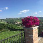 Skurnik Goes to Italy 2016 50