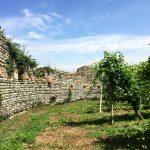 Skurnik Goes to Italy 2016 26