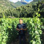 Skurnik Goes to Italy 2016 22