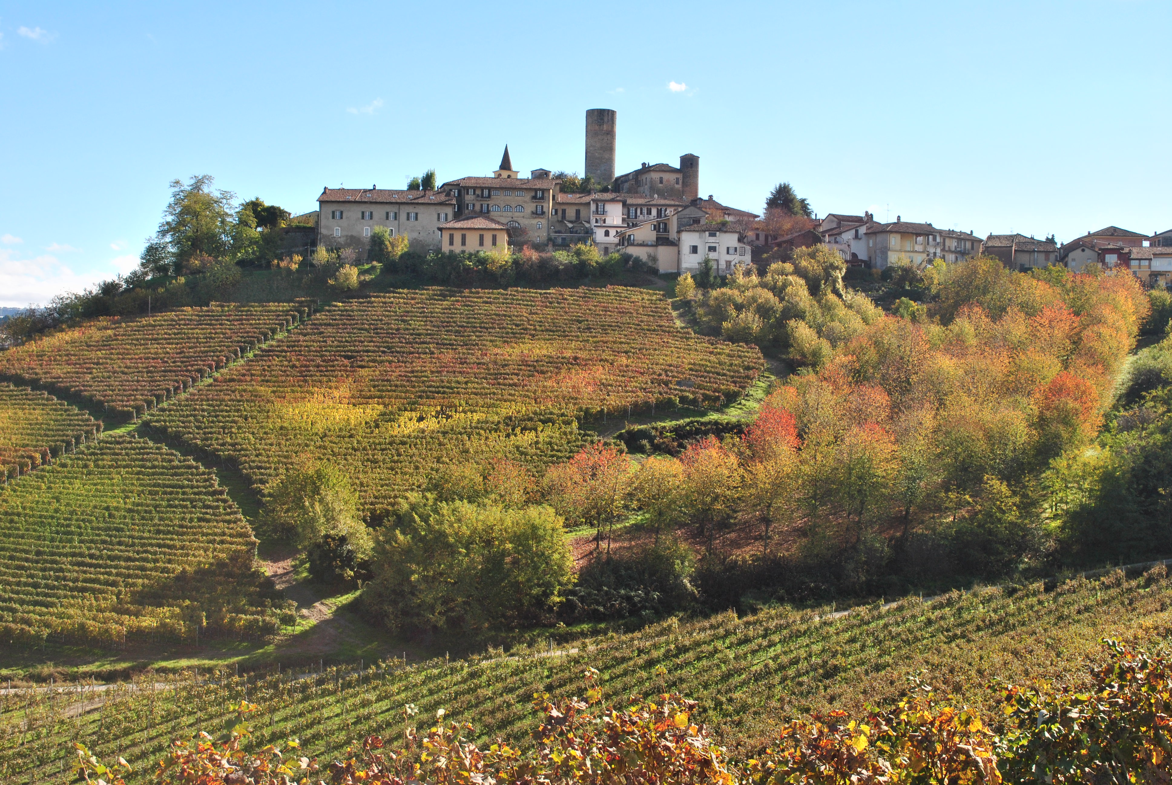 2013-barolo-a-vintage-to-remember