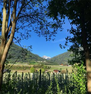 Two Days in the Alto Adige 26