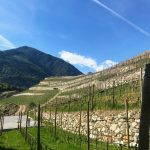 Two Days in the Alto Adige 28