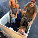 Ceaseless Wild: A Tribute to Grace & the Grenache of California 4